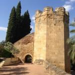 Tour Jardin Botanique - Cordoue