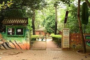 Jardin des plantes Porto Novo - Que faire au Bénin