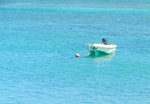 Barque Corralejo - que faire à Fuerteventura