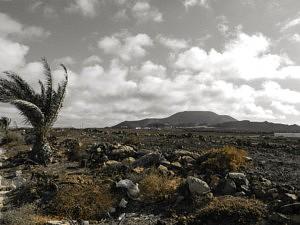 Paysage désertique - que faire à Fuerteventura