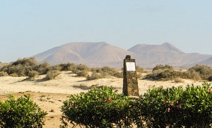 Volcan La Oliva - que faire à Fuerteventura