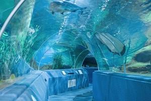 tour de dubai - burj khalifa - aquarium - librevoyageur