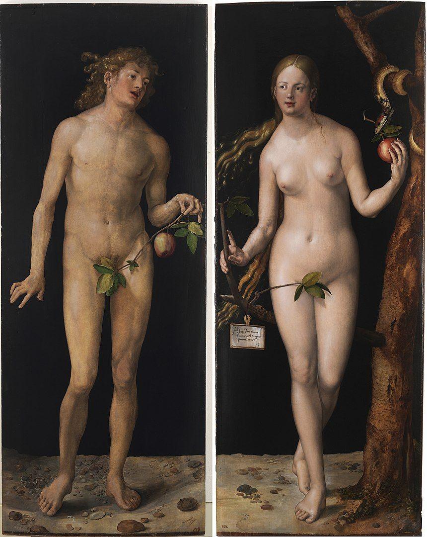 Albrecht Dürer - adam et eve